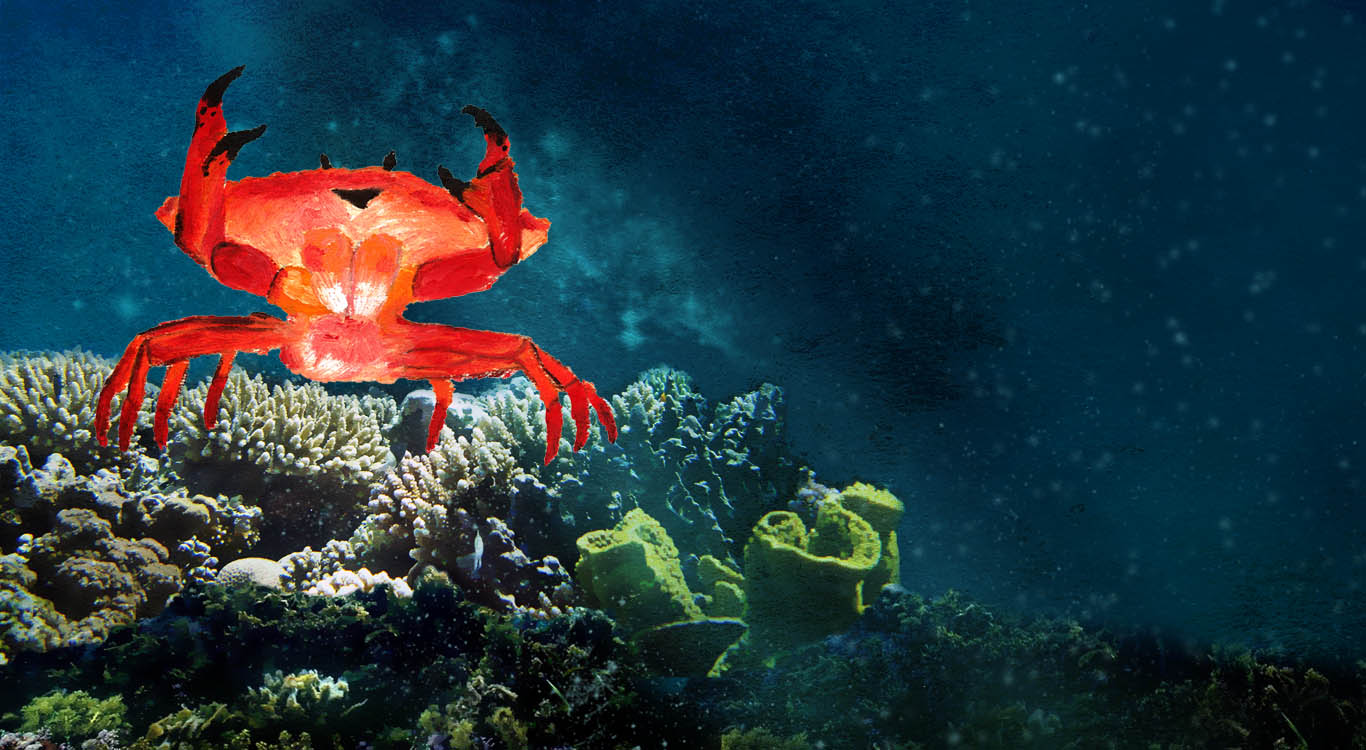 Mr. Crabby Crab singing